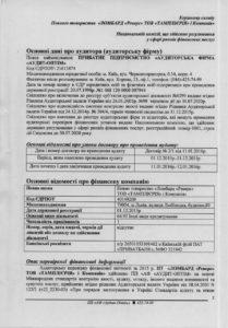 Audytorskyj-vysnovok-2