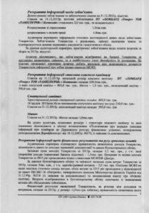 Audytorskyj-vysnovok-5